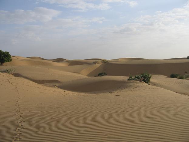 砂漠.jpg